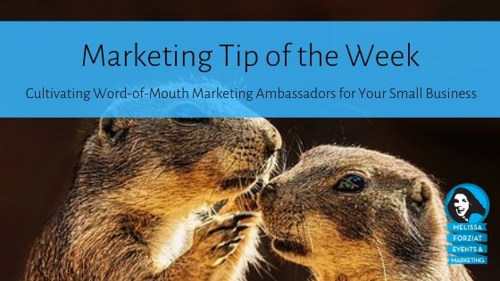 Cultivating Word-of-Mouth Marketing Ambassadors for Your Small Business