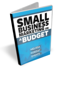 ebook small business marketing on a budget