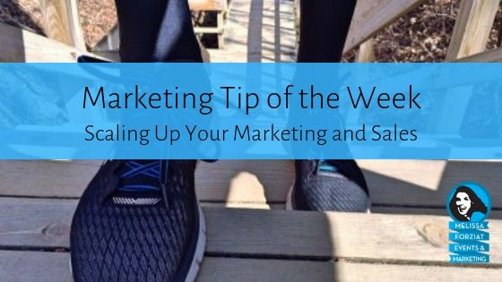 Scaling Up Your Marketing and Sales