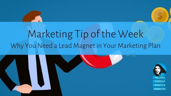 Why You Need a Lead Magnet in Your Marketing Plan